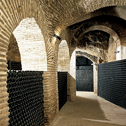 Presentamos un amplio surtido en tipos de vino de distintas denominaciones de origen; para el sector de la hostelería, ofrecemos asesoramiento en la confección de cartas de vino, ajustado a las características de cada establecimiento.